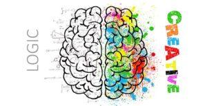 Gehirn mit beiden Gehirnhälften